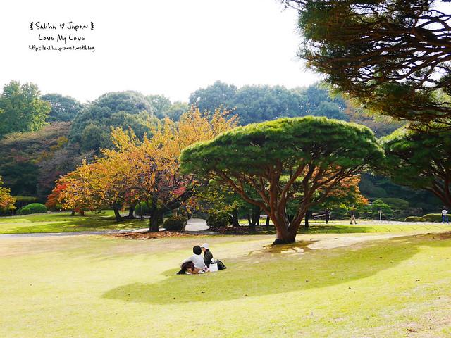 日本東京自由行新宿御苑庭園景點 (36)