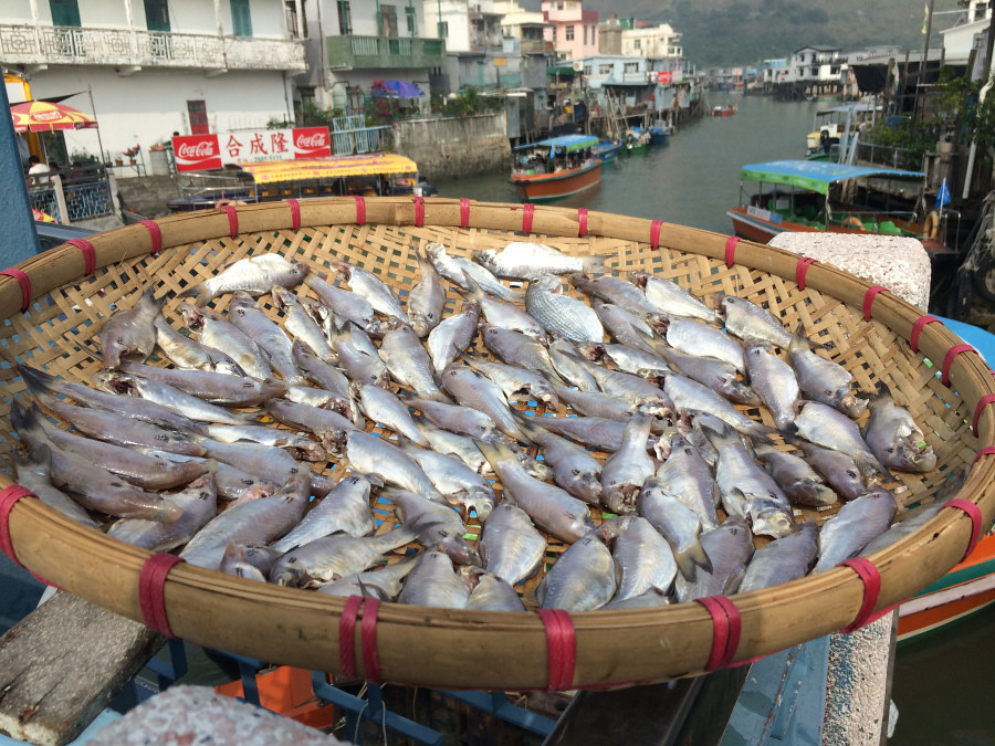 Tang, Christine; Hong Kong - A Visit to a Fishing Village (3)