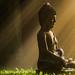 Zen Garden by christiane.M
