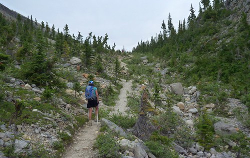 Starting up the Iceline Trail