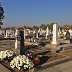 Auf dem Neugässer Friedhof an Allerheiligen 2015. Fotos: Roswitha Csonti