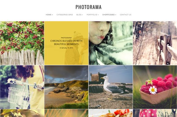 Creativemarket Photorama v0.3 – Photography WP Theme