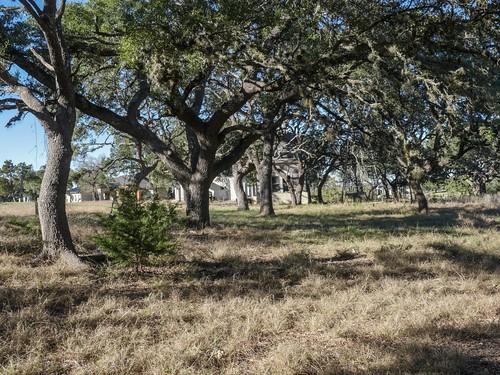 133 Bristow Way Boerne TX-large-017-21-Lot Views17-1334x1000-72dpi (1024x768)