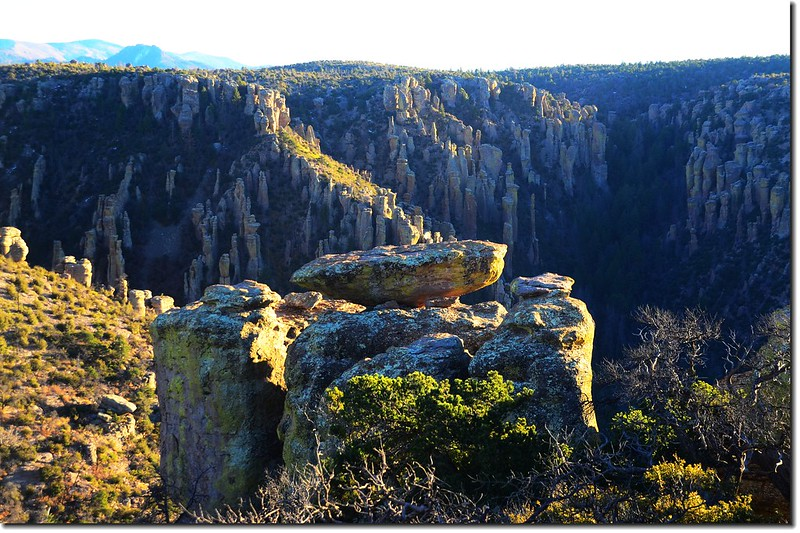 Chiricahua National Monument, AZ (22)