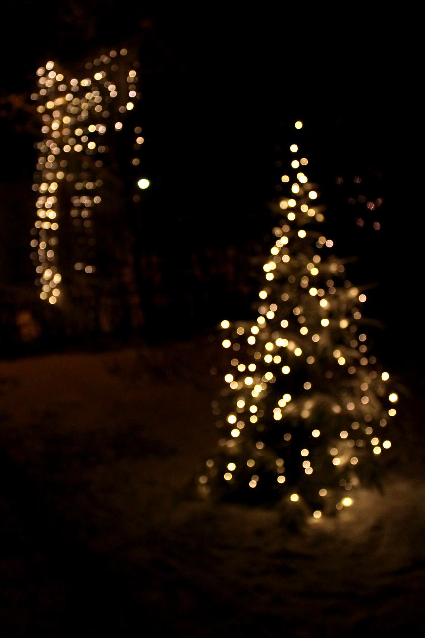 joulukuu16