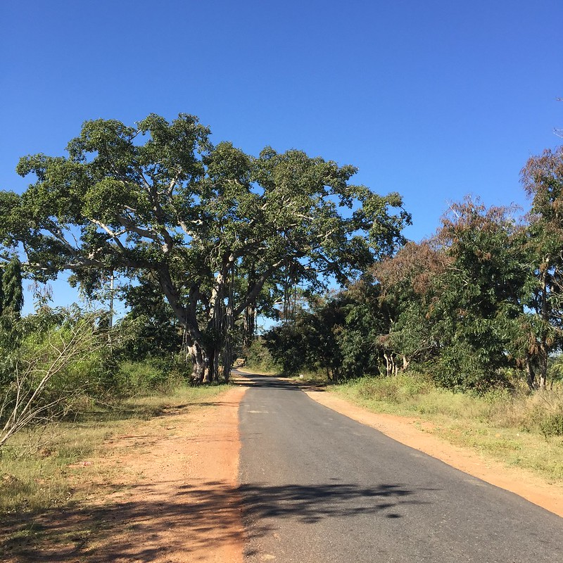 Zen roads to Nuggehalli