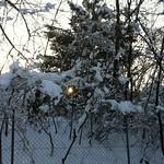 Schwamendingen im Winter
