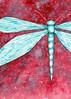 Dragonfly Verde