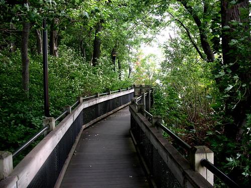 Dutton Park