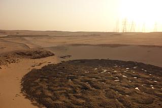 Lago de petróleo Al Bahra, Kuwait