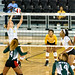 The Xavier University of Louisisna Gold Nuggets Volleyball Team's season opener against Mississippi Valley State in the Big Easy Blastoff. Photo by Irving Johnson III