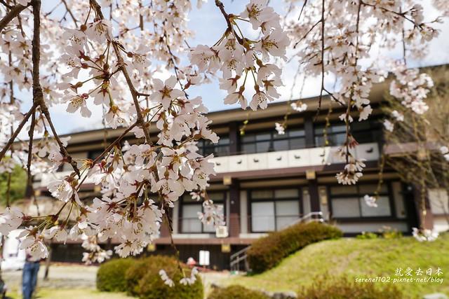0402D8京都醍醐寺-1160333