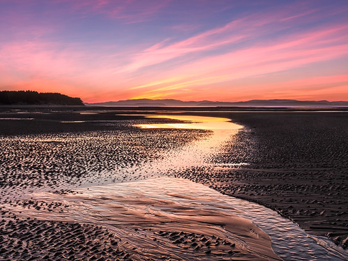 Copper and Gold by Stoates-Findhorn