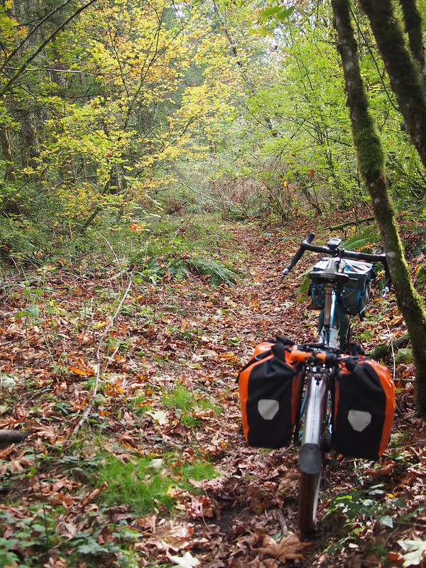 Beyond the Horizon: Lost in the Woods: I had a lot of fun riding singletrack on this guy.