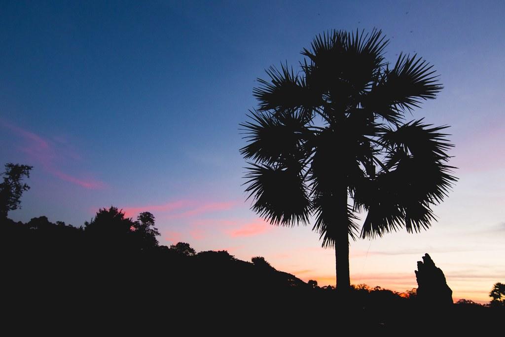 Angkor Wat Sunset-2355