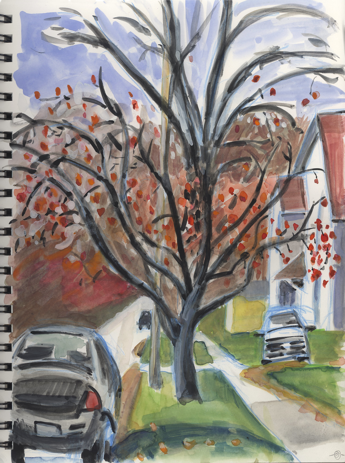 Apple Tree on 2nd Street