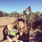 Giraffes at the zoo by bartlewife