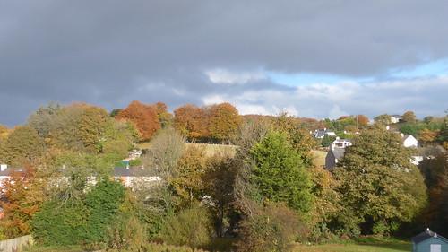 autumn donegal stranorlar trees