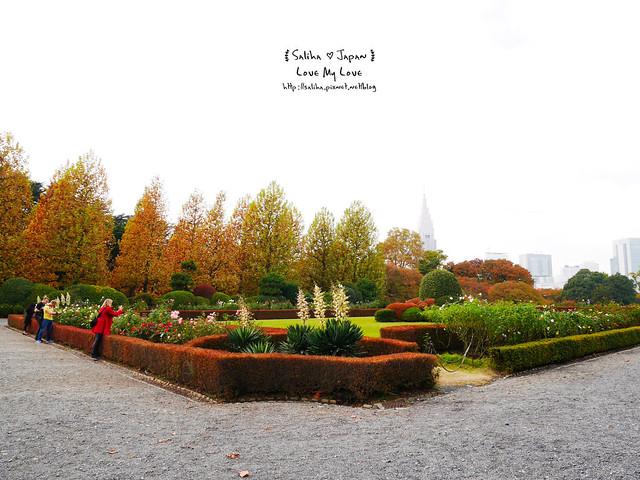 日本東京自由行新宿御苑庭園景點 (5)