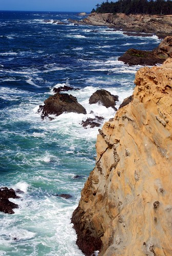 From the Cliffs at Shore Acres