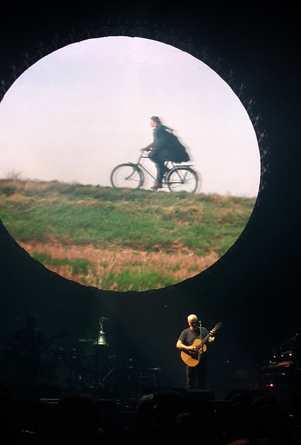 Dave Gilmour in concert