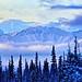 Winters Magical Colors - Alaska by JLS Photography - Alaska