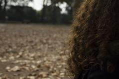 curly autumn