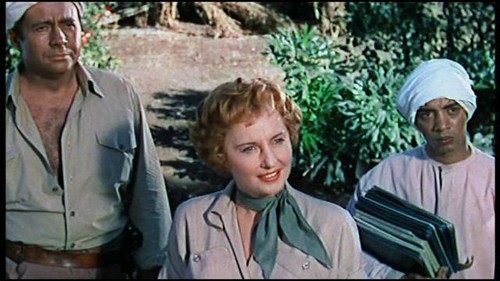 Escape to Burma - screenshot 1
