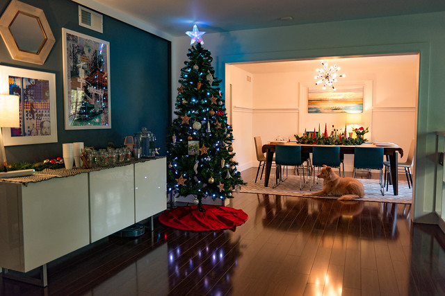 Christmas Tree with a Dog