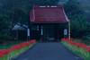 Photo:Temple gate By t.kunikuni
