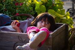 A Girl Enjoying Apple