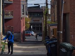Back Alley Bike Ride.