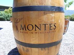 wine(0.0), drinkware(0.0), drink(0.0), drum(0.0), hand drum(0.0), alcoholic beverage(0.0), flowerpot(1.0), wood(1.0), barrel(1.0),