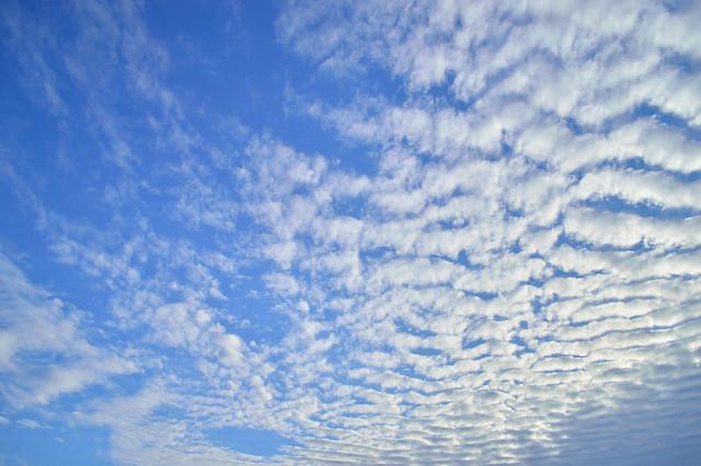 夏の空 Summer Sky