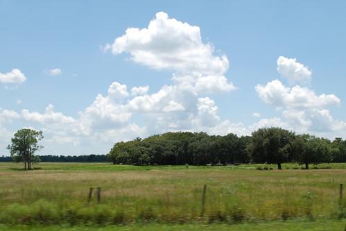usa cloud florida northamerica ranchland desotocounty