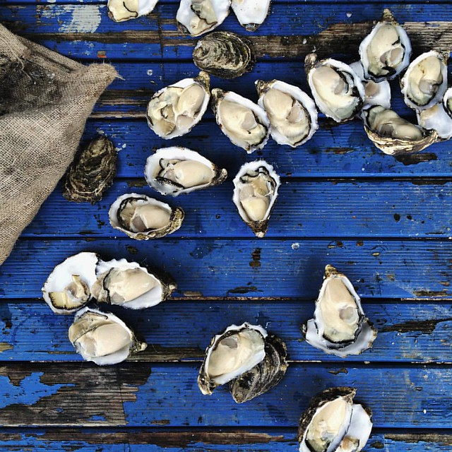 Today I gorged myself on the freshest, sweetest (and by far the best) oysters I've ever eaten, really.  In related news I shucked one of the aforementioned oysters and I still have all my fingers?. Tassie, your weather may be frighteningly bipolar