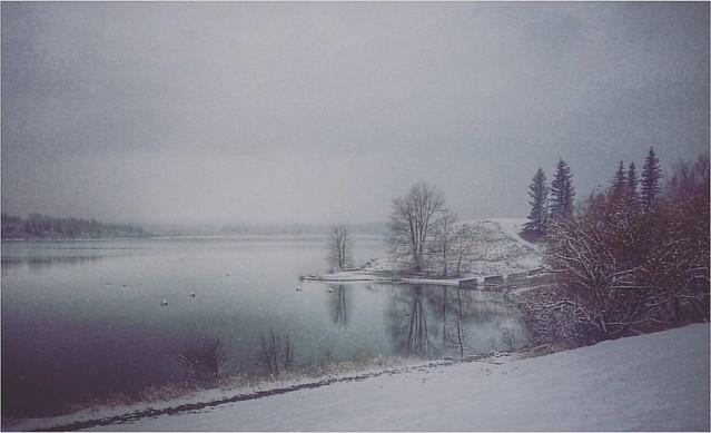 And so it begins ... #yycsnow #yycwinter #yycweather #yyc #winter #capturecalgary #calgary #glenmore #glenmoredam #grey #greysky #water #reflections #itssnowing #hellowinter #seasons #andsoitbegins #itsbeginingtolookalotlikechristmas