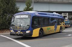 Proterra electric bus leaving Eastgate P&R