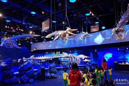 深海巨怪特展+顛倒屋展~珍貴深海生物標本亞洲首展