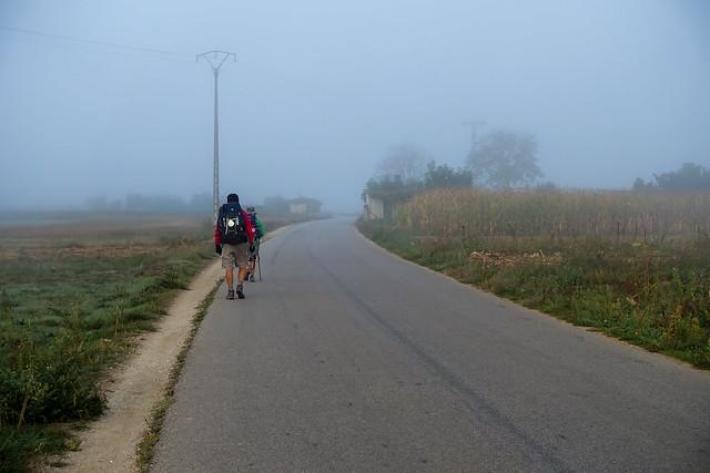 Camino-294