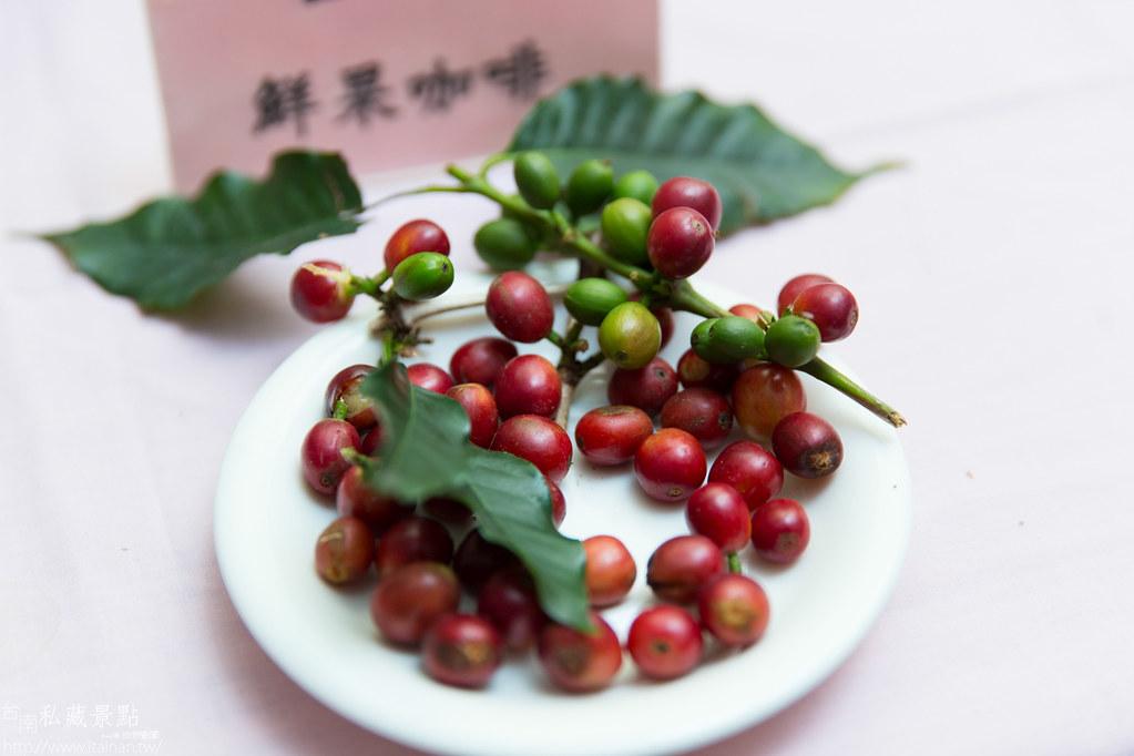 村長庭園咖啡 (11)
