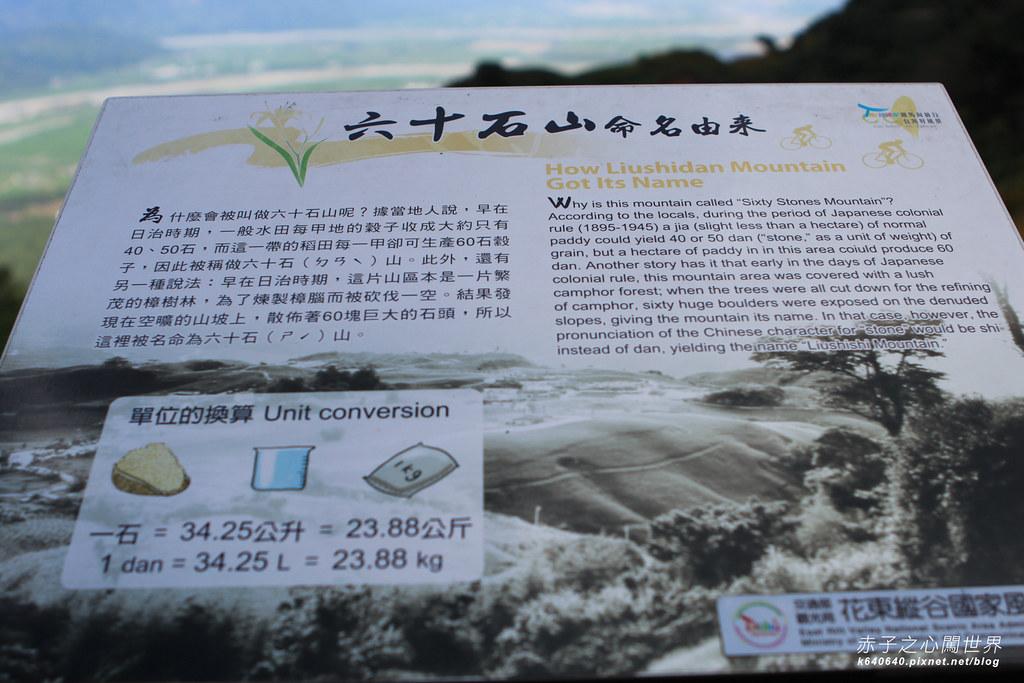 六十石山金針花-2012-05