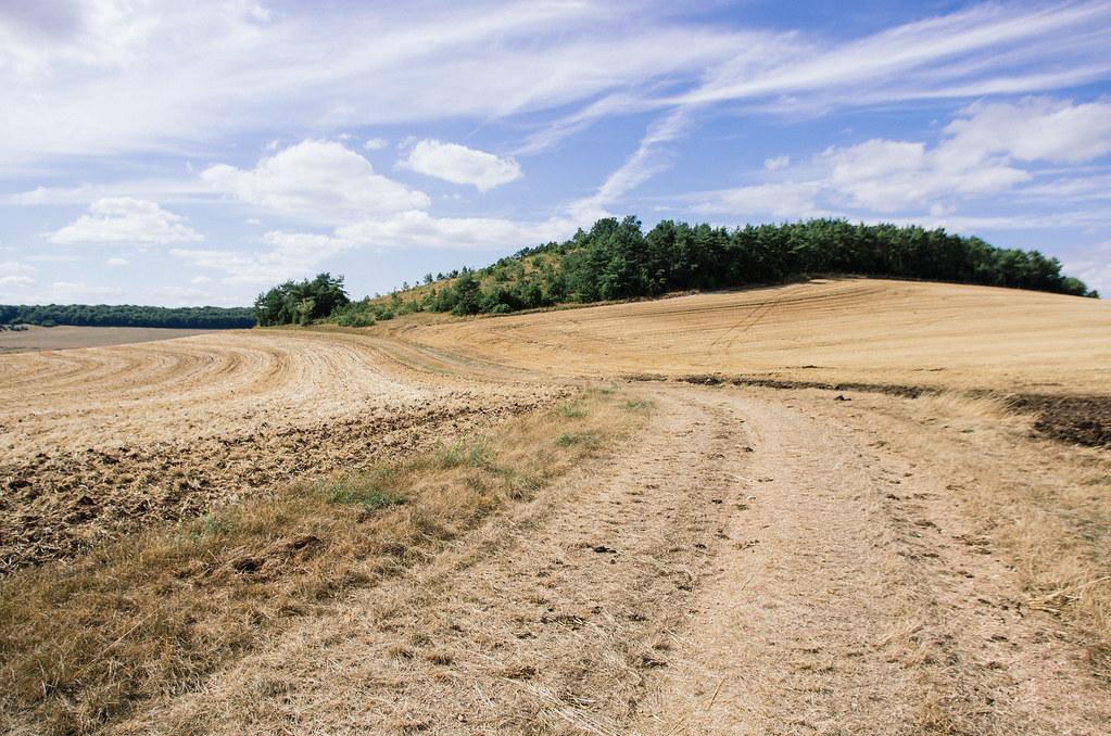 Dans l'Aube, chemins de Compostelle et via Francigena  - Carnet de voyage en France - La butte de Taloison