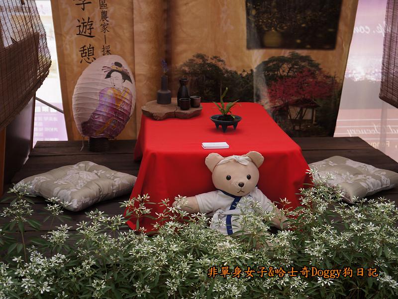 2014臺中新社花海17