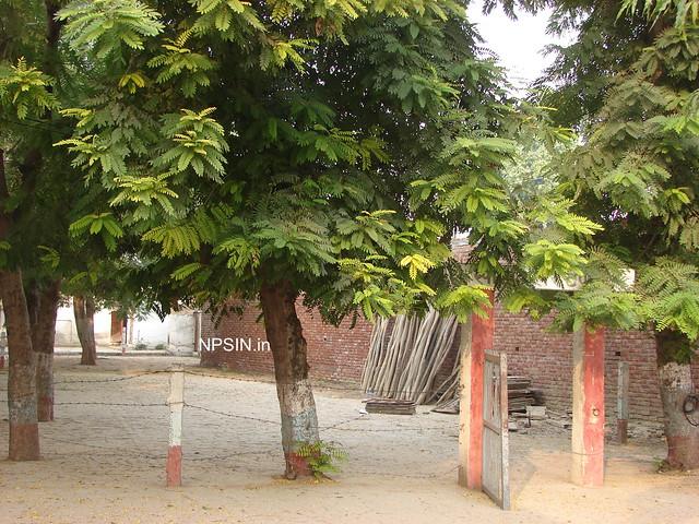 Cycle Stand in Kshetriya Inter College (KIC)
