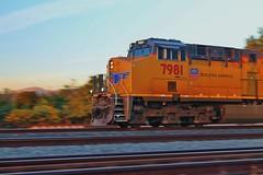 Union Pacific 7981