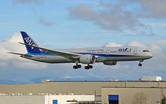 All Nippon Airways 787