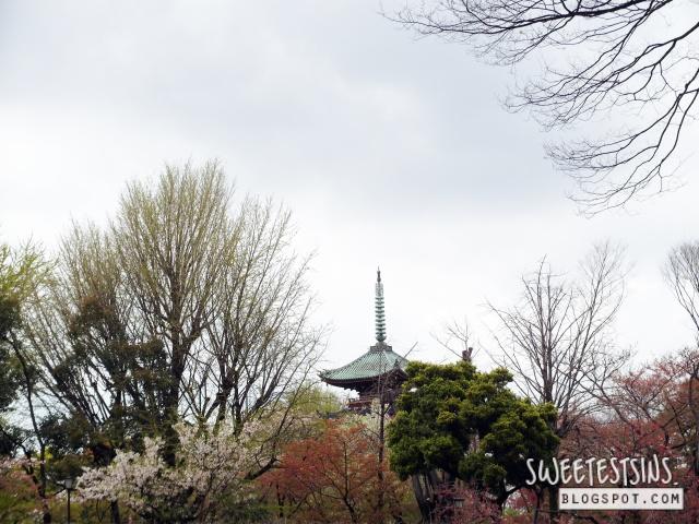 japan tokyo trip ueno park 9