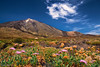 Canadas del Teide shot with my Fuji X-T1 and a Kit Lens :-) #100DaysOfFreedom