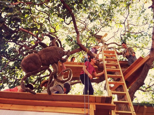 Tea in a tree! Multi-level treehouse!